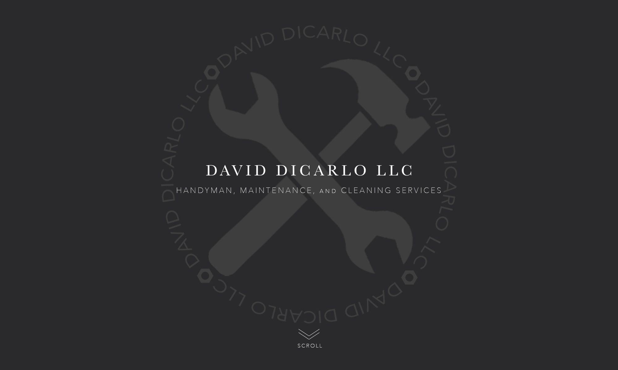 David DiCarlo LLC